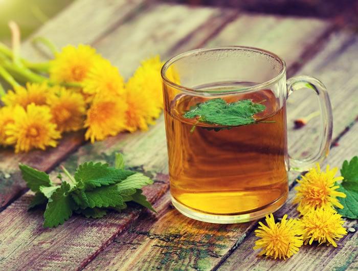 ceai din flori de papadie beneficii neuroendocrine cancer appendix