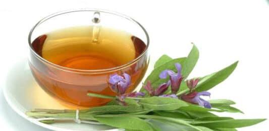 Ceai de salvie în ceasca cu frunze si flori de planta alături
